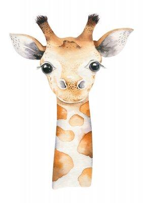 Affisch A poster with a baby giraffe. Watercolor cartoon giraffetropical animal illustration. Jungle exotic summer print.