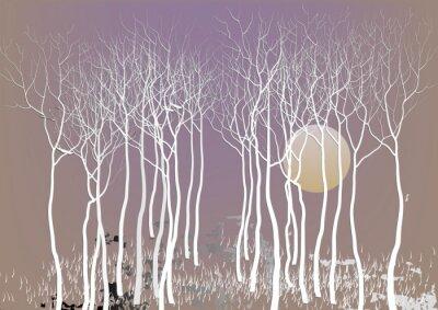 Affisch Abstrakta skogsträd med ut ledighet med månen nattetid vision, vit träd