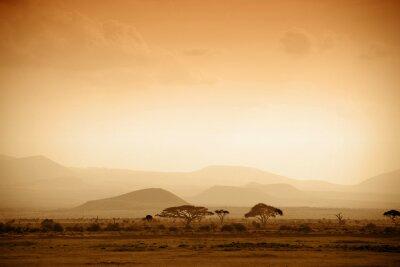 Affisch afrikanska savannen vid soluppgången