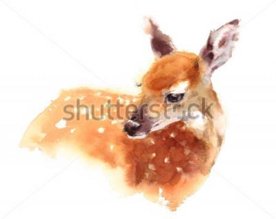 Affisch Akvarell Baby Hjort Handmålade Fawn Illustration isolerad på vit bakgrund