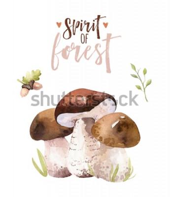 Affisch Akvarell bohemsk skogsvampuppsättning, skogsmark isolerad affischamanitaillustration, agarisk fluga, boletus, orange-lock boletussvampdekoration.