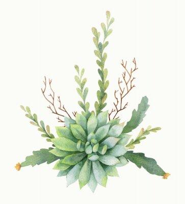 Affisch Akvarell vektor bukett kaktusar och saftiga växter isolerad på vit bakgrund.