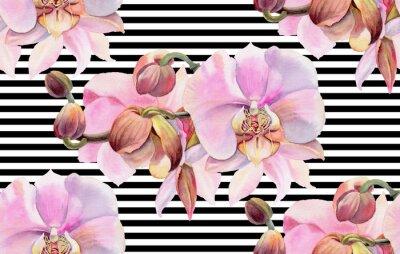 Affisch Akvarellblommor. Rosa orkidéer
