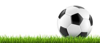 Affisch Ballon de football vectoriel 2