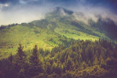 Affisch Bergslandskap och skogar toppar täckt med dimma. Dramatisk mulen himmel.