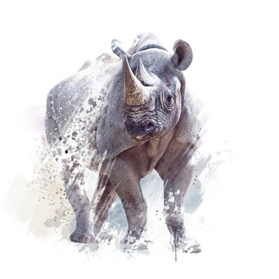 Affisch black rhinoceros watercolor on white background