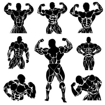 Affisch Bodybuilding, Styrkelyft, vektor, sätta