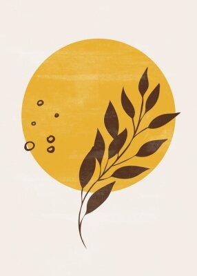Affisch Botanical vintage print boho sun moon minimalist wall art abstract home decor