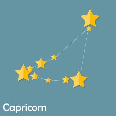 Affisch Capricorn Zodiac undertecknar av vackra ljusa Stars Vector Illus