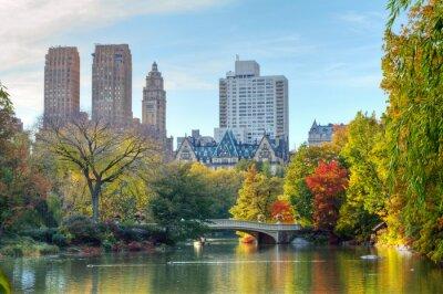 Affisch Central Park i höst