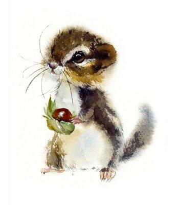 Affisch Chipmunk. Watercolor hand drawn illustration.