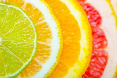 Affisch citrus bakgrund