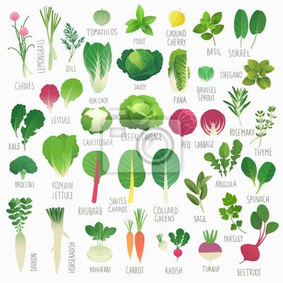 Affisch Clip konstsamling mat Vol.1: grönsaker och örter