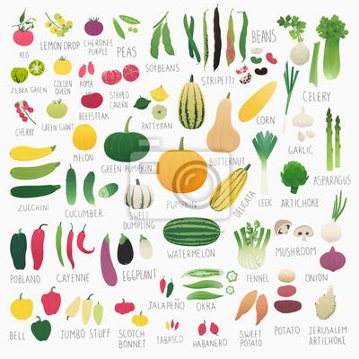 Affisch ClipArt mat samling Vol.2: grönsaker