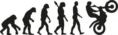 Affisch cross evolution