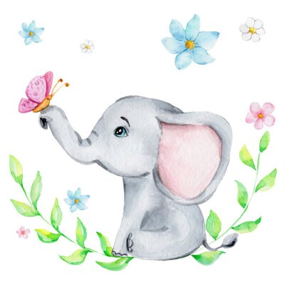 Affisch Cute little elephant with pink butterfly and flowers; watercolor hand draw illustration; with white isolated background
