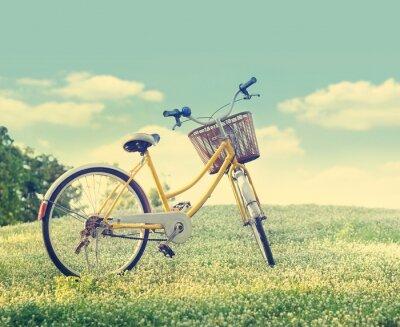 Affisch Cykel på den vita blomman fält och gräs i solsken natur bakgrund