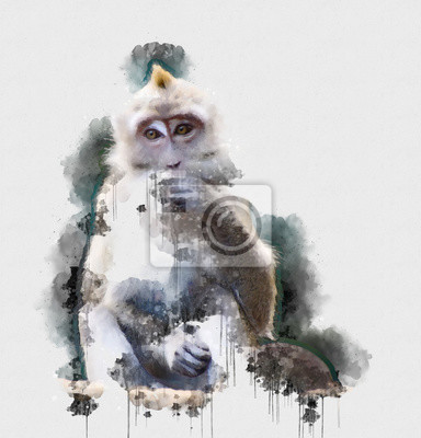 Affisch Digital watercolor painting of Monkey. Painting of Beautiful image of a Monkey in the Forest. Isolated painting of Cute chimpanzee. Endangered Animal Abstract Paintings Wallpaper. Portrait of Monkey