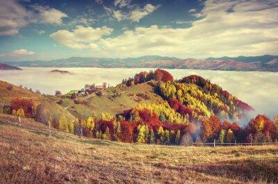 Affisch Dimmig höstmorgon i Karpaterna.