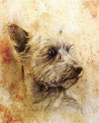 Affisch Dog ritar att dra på gammalt papper, vintagepapper och gamla strukturen med färgfläckar.