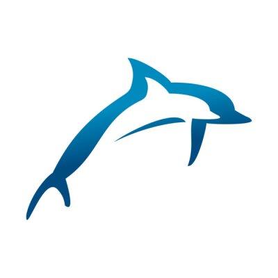 Affisch dubbla Dolphins