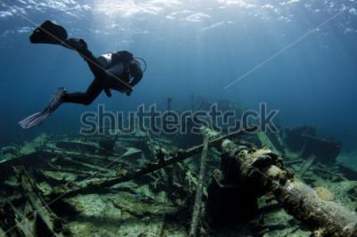 Affisch Dykare dykar över ett skeppsvrak