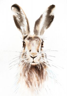 Affisch Easter bunnies watercolor illustration, rabbit portrait isolated