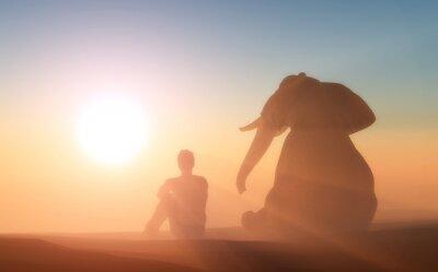 Affisch Elefant och man