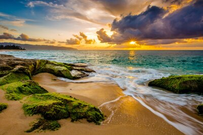 Affisch En vacker Hawaiian Sunset