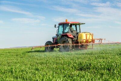 Affisch Farmer besprutning grönt vetefält