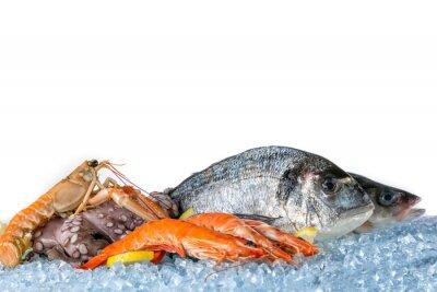 Affisch Färska skaldjur isolerad på vit bakgrund
