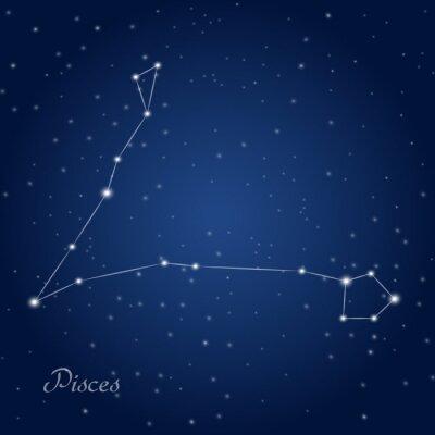 Affisch Fiskarna konstellation stjärntecken på stjärnklara natthimlen