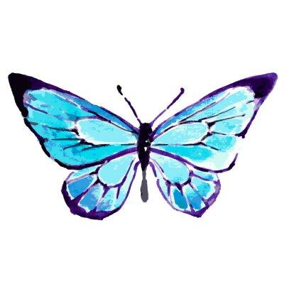 Affisch fjäril, vattenfärgdesign