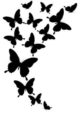 Affisch fjärilar konstruktion
