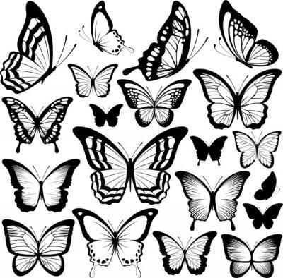 Affisch fjärilar svarta silhuetter