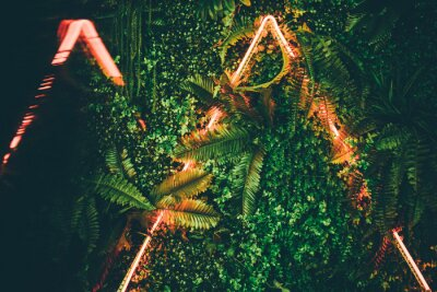 Affisch Flat lay. Creative fluorescent color layout made of tropical leaves with neon light triangle .