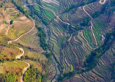 Affisch Flygfoto över risfält i närheten av Pokhara