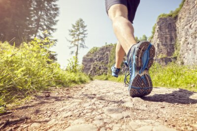 Affisch Friska trail run