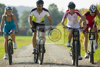 Affisch Fyra vänner cykling på vägen.