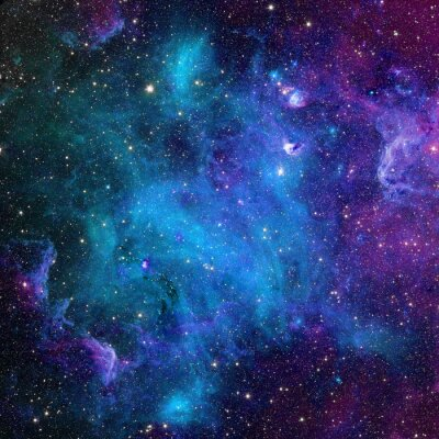 Affisch galax