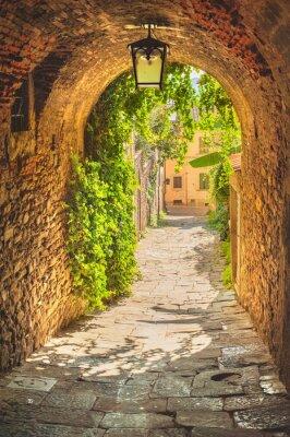 Affisch Gamla gatorna i grönska en medeltida toskanska staden.