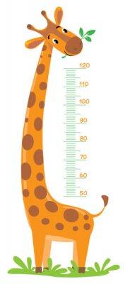Affisch Giraff mätare vägg