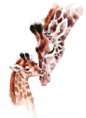 Affisch Giraffes Mother and Baby Watercolor hand painted wild animal illustration isolated on white background