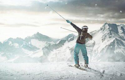 Affisch glad Skidåkare