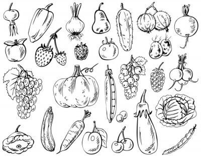 Affisch grönsaker, frukter och bär