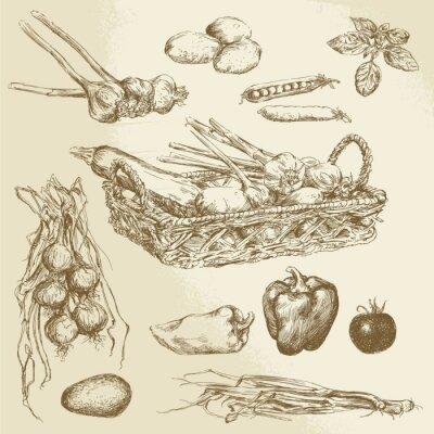 Affisch grönsaker - handritad samling