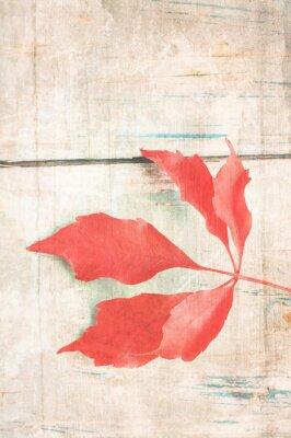 Affisch Grungy bakgrund med röda blad