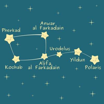 Affisch gullig tecknad liten skopa konstellation med namnet på stjärnorna vektor