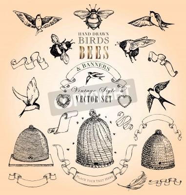 Affisch Handritad Fåglar, bin och banderoller Vintage Style Vector Set