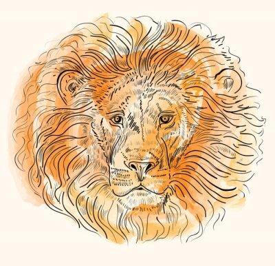 Affisch Handritad vektor illustration med lejonhuvud
